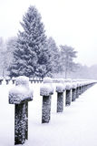 Graveyard in snow Stock Photo