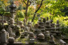 Graveyard stones with sunset light from behind at Kiyomizu-dera Temple. Graveyard stones with sunset light from behind at the famous Kiyomizu-dera Buddhist royalty free stock photos