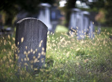 Graveyard Royalty Free Stock Photography
