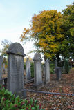Graveyard with trees. Graveyard with old trees in the background royalty free stock photography