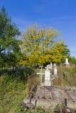 Graveyard Royalty Free Stock Image