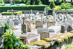 Graveyards and moss. Royalty Free Stock Images