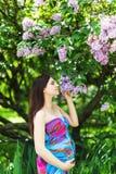 Gravid flicka i klänning i lavendelträdgård Fotografering för Bildbyråer
