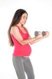 gravid genomkörare Fotografering för Bildbyråer