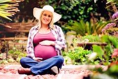 gravid härlig lady Arkivfoton