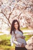 Gravid kvinna Royaltyfri Foto