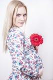 Gravid kvinna med blomman Arkivbild
