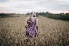 Gravid kvinna som går i vetefältet royaltyfri bild