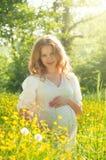 Gravid kvinna som kopplar av i natur Royaltyfri Foto
