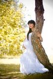 Gravid kvinna som kopplar av i parken Royaltyfria Bilder