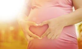 Gravid kvinna som tycker om naturen Royaltyfri Fotografi