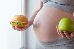 Gravid kvinnabuk som rymmer en platta med skräp och sund mat Begreppsvalet av bantar under havandeskap Royaltyfri Foto