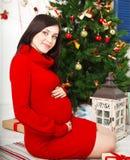 Gravid kvinnasammanträde nära julgranen arkivfoto