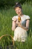 gravid musa Arkivbilder