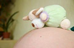 gravid toy för buk Fotografering för Bildbyråer