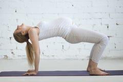Gravid ung kvinna som gör före födseln yoga Tabellöverkanten poserar Arkivfoton