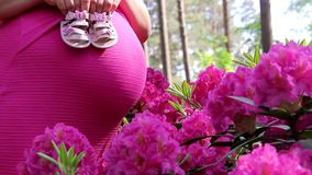 Gravida kvinnan i klänning rymmer händer på buken på naturlig bakgrund av rhododendron lager videofilmer