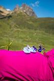 Gravida kvinnan som ligger på ett gräs med, behandla som ett barn skor på hennes buk Royaltyfria Foton