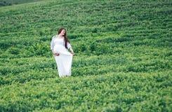 Gravida kvinnor i grönt fält i den vita klänningen arkivfoto