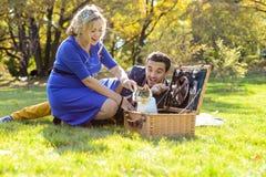 Gravida lyckliga och le par på picknick med katten royaltyfri fotografi