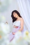 Gravidanza delicata Bello incinto in vestito bianco leggero con le orchidee Fotografie Stock