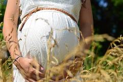 Gravidez bonita Foto de Stock