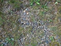 Gravier avec l'herbe Photo libre de droits