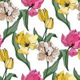 Gravierte Tintenkunst des Vektors Tulpe Botanische mit Blumenblume Nahtloses Hintergrundmuster Gewebetapeten-Druckbeschaffenheit stock abbildung