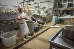 GRAVINA在普利亚,意大利- 2015年6月, 13日:Caciocavallo乳酪m 库存图片