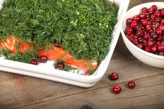 Gravlax and cranberries Royalty Free Stock Photography