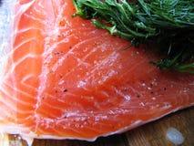 Gravlox salmon Stock Photography