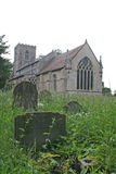 Gravstenar i bevuxen kyrkogård Royaltyfria Foton