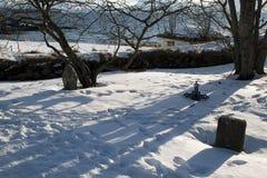 Gravstenar i medeltida kyrklig kyrkogård arkivbilder