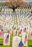 Gravstenar med amerikanska flaggan i krigsveterankyrkogård Arkivbild
