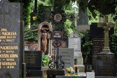 Gravstenar på den Vysehrad kyrkogården i Prague Arkivfoto