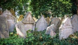Gravstenar på gammal judisk kyrkogård i Prague Royaltyfri Foto
