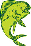 Gravura a água-forte de salto dos peixes do golfinho Imagem de Stock