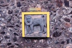 gravura Leão-atada do macaque foto de stock royalty free