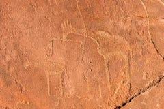 Gravuras da rocha do mateiro - Namíbia Foto de Stock Royalty Free