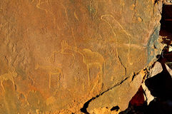 Gravuras da rocha em Twyfelfontein, Namíbia Fotos de Stock Royalty Free