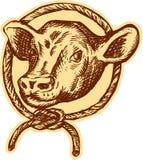 Gravure à l'eau-forte de cercle de corde de tête de Taureau de vache Images stock