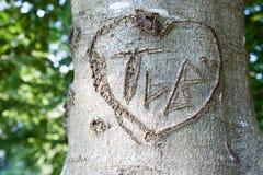 Gravure à l'eau-forte de l'amour sur un rondin Image stock