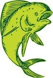Gravure à l'eau-forte sautante de poissons de dauphin Image stock