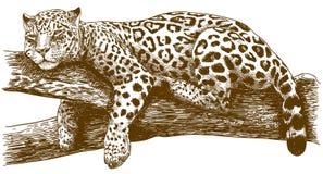 Gravure de l'illustration de dessin du léopard sur la branche photo stock