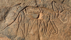 Gravure de roche dans le désert Images libres de droits