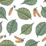 Gravure du modèle sans couture des feuilles et des graines de bouleau Photographie stock libre de droits