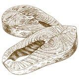 Gravureillustratie van forellapje vlees royalty-vrije illustratie