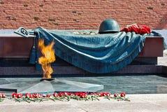 Gravvalv av den okända soldaten med den eviga flamman i Alexander Gard Royaltyfria Foton