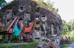 Gravvalv av Torajan i Sulawesi, Indonesien royaltyfri fotografi