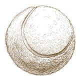Gravyrillustration av tennisbollen Fotografering för Bildbyråer
